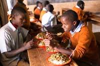 Svaki dan, zahvaljujući vašim donacijama, hranimo čak 567 gladnih usta!